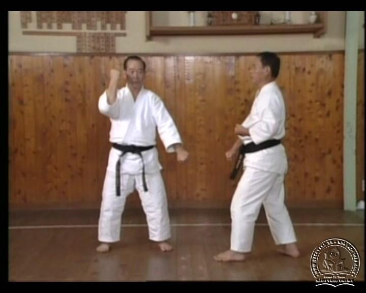 DVD Motobu Ryu Karate Jutsu by Motobu Chomasa screenshot 06
