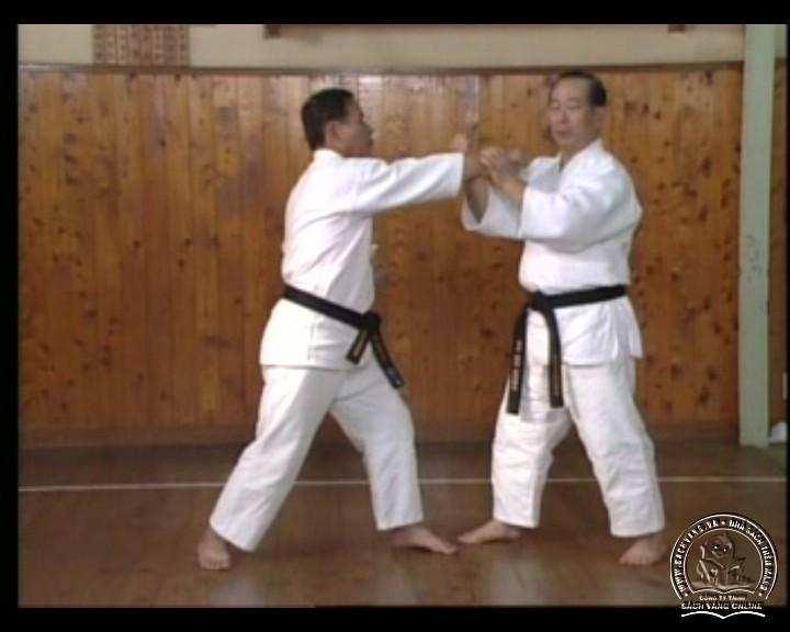 DVD Motobu Ryu Karate Jutsu by Motobu Chomasa screenshot 07