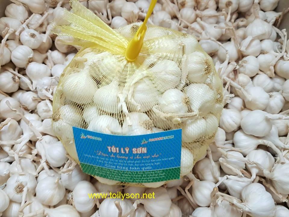 Nguồn gốc và công dụng Tỏi Lý Sơn (Ly Son Garlic)