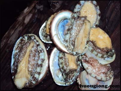 Các món ăn chế biến bào ngư ngon miệng và dinh dưỡng