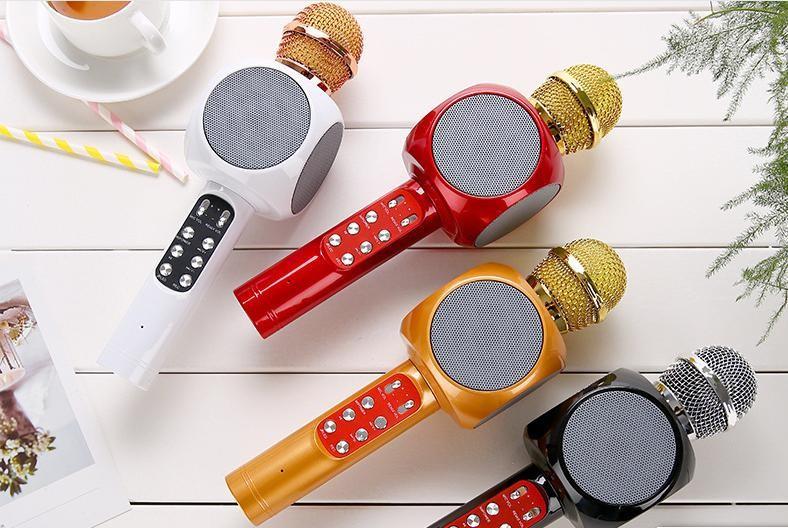 Micro karaoke 1816