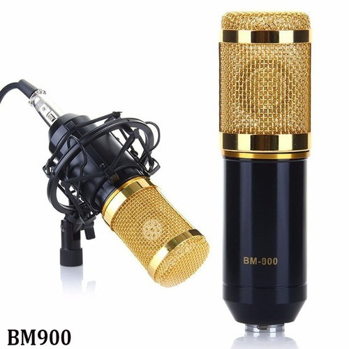 Mic BM900