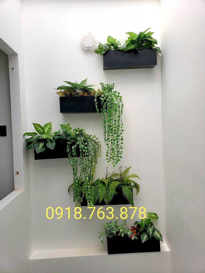 Hộp cây giả xinh xắn trang trí tường