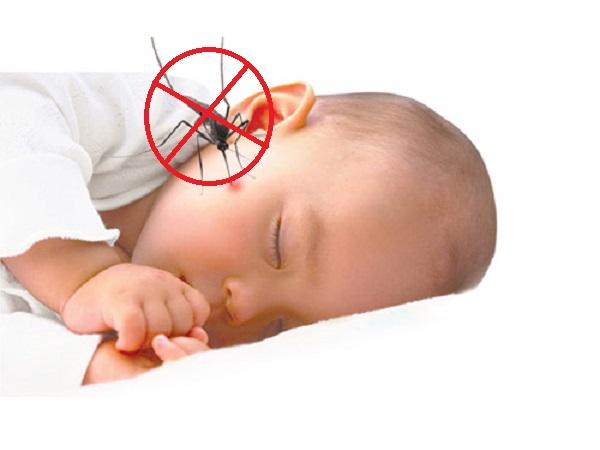 5 cách tiêu diệt muỗi hiệu quả để phòng tránh bệnh sốt xuất huyết