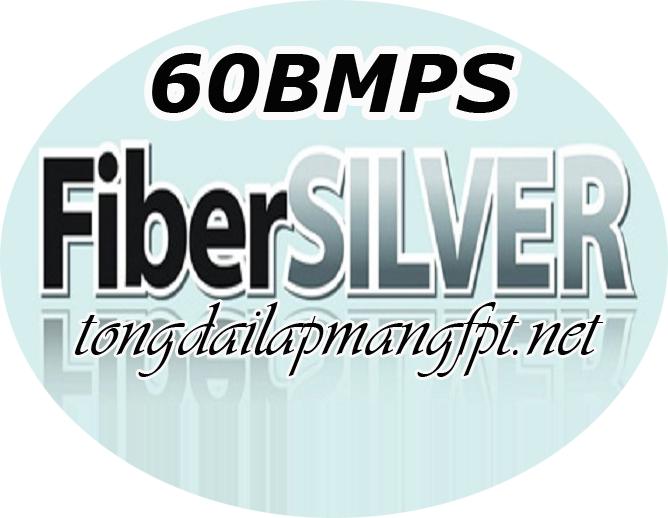 FiberSilver 60mbps