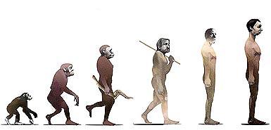 Con người đang tiến hoá tới đâu?