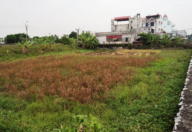 Thủ tướng yêu cầu xử lý sai phạm trong việc giao đất ở Nam Định