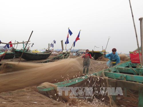 Nam Định nuôi trồng thủy sản cho hiệu quả cao