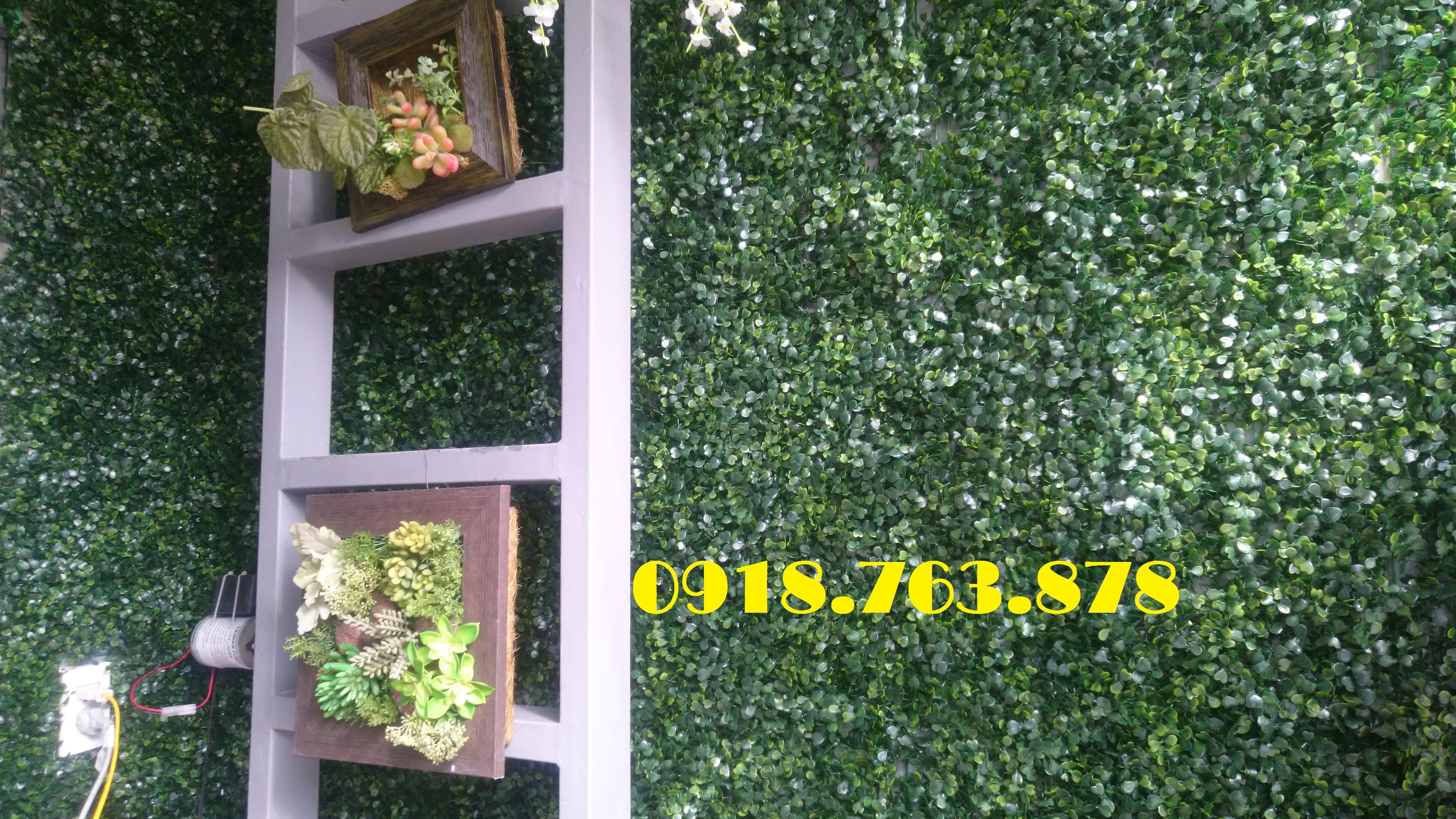 Tường cỏ xà lách xoong spa quận 5