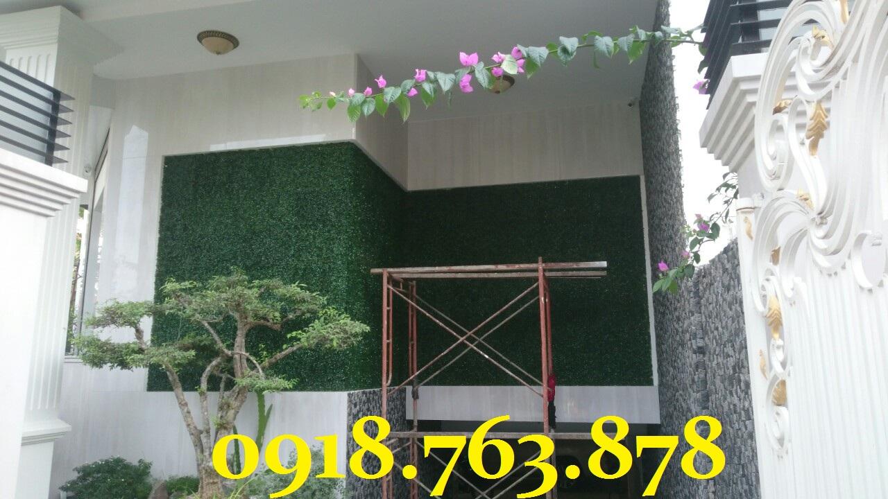 thi công cỏ xà lách xoong ốp tường