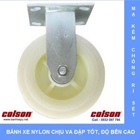 Bánh xe nhựa Nylon trắng cho xe đẩy thủy hải sản Colson www.banhxedaycolson.com