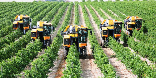 Nhanh chóng trở thành tỷ phú chỉ với 5 cách làm giàu từ nông nghiệp