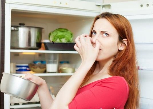 Mách bạn cách khử mùi tủ lạnh hiệu quả nhất từ trước đến nay