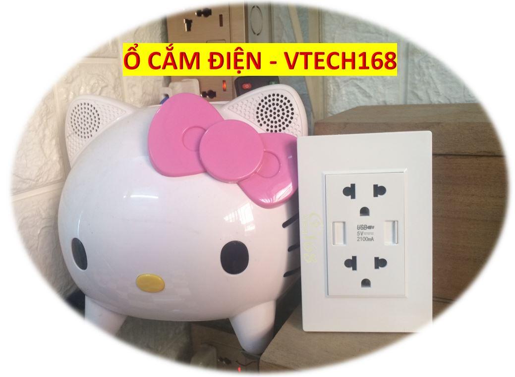 ổ cắm điện 3 chấu đôi có 2 USB_VTECH168_G118