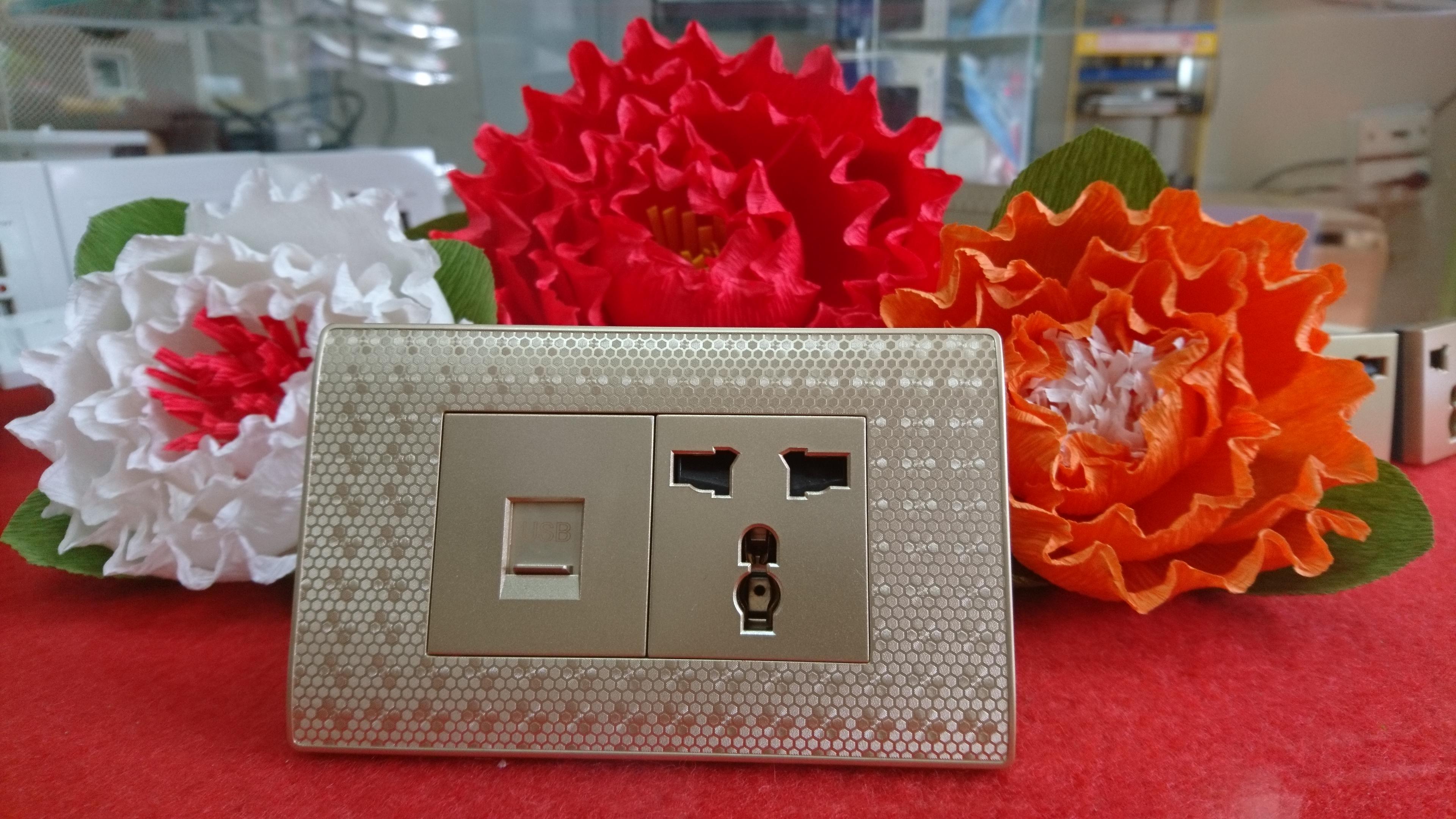 ổ cắm đa năng 118 có cổng USB - màu vàng kim - Âm tường