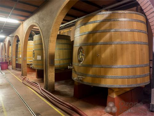 Sử dụng Ozone trong nhà máy rượu và vệ sinh môi trường