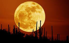 Siêu trăng xuất hiện vào tối nay