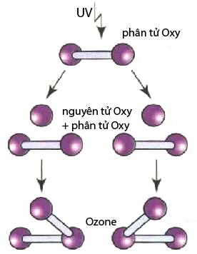Nguyên lí hoạt động của máy ozone dùng tia UV