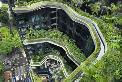 Những tòa nhà thiết kế thân thiện với môi trường của Singapore