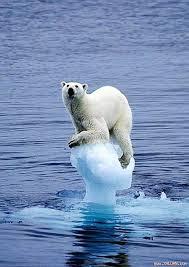 Sự nóng lên toàn cầu và sự do dự của con người