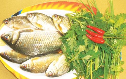 Cá diếc - món ăn bổ dưỡng ít người biết đến