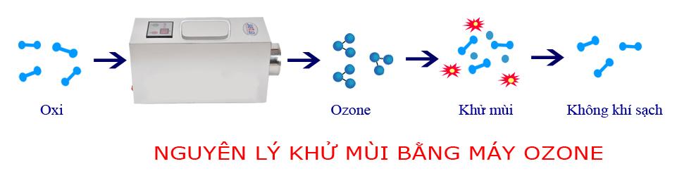 Nguyên lý hoạt động của máy khử mùi ozone