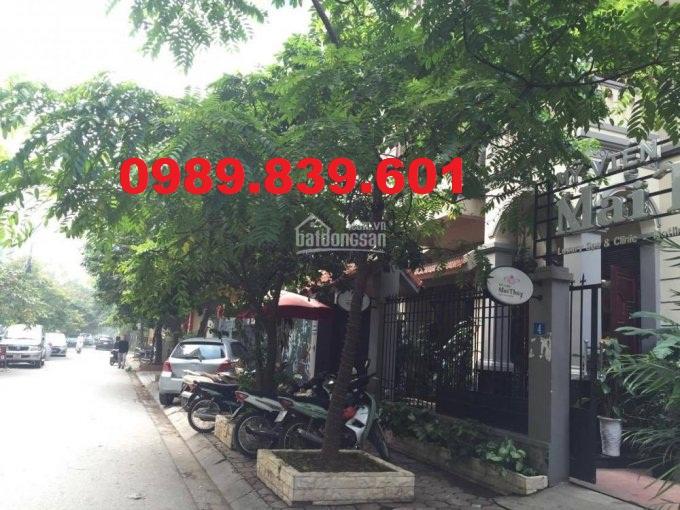 Cho thuê 355m2 đất mặt phố Dịch Vọng Hậu