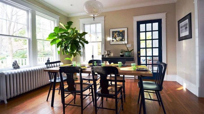 trồng cây xanh trong phòng để lọc không khí