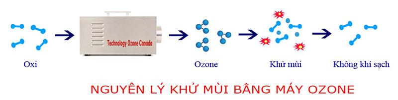 Nguyên lí khử mùi sơn bằng ozone
