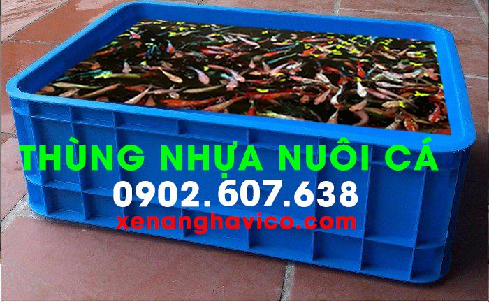 Thùng nhựa nuôi cá tiện lợi