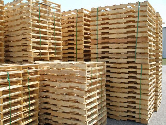 Pallet gỗ chống mối mọt, giá rẻ