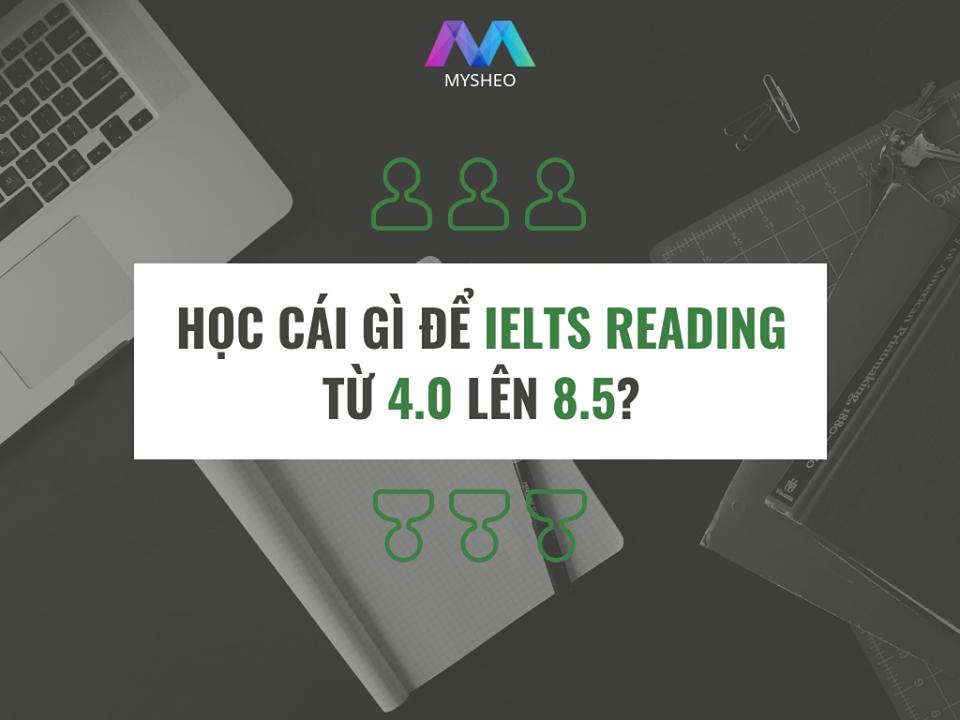 HỌC GÌ ĐỂ IELTS READING TỪ 4.0 LÊN 8.5?