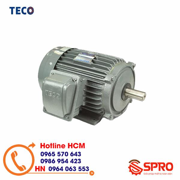 Mô tơ điện Teco AESV1S-0.25 3 pha 0.25HP