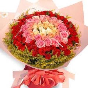 đặt hoa tặng người yêu tại thái bình