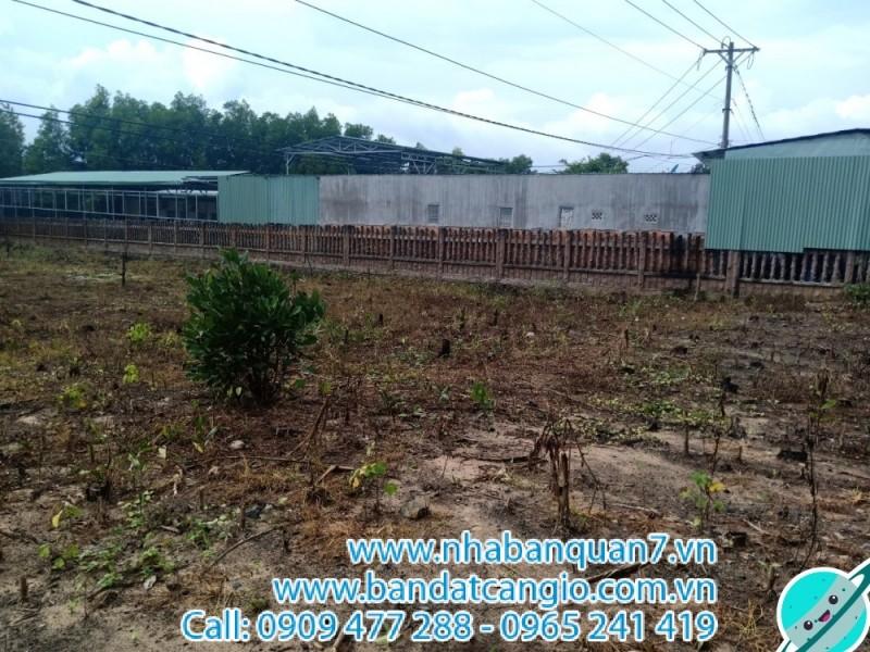 Bán đất đường ven biển xã Bình Châu huyện Xuyên Mộc, DT 1000m2, giá 1.7 Tr/m2
