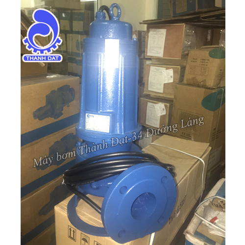 Bơm nước thải Pentax DMT 210